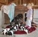 Tag 24 - Brave Hundemamas